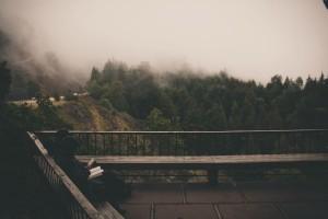 foggy-read2